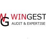 wingest audit & expertise